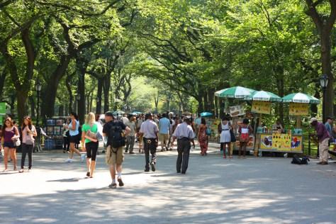 the avenue under the elms central park
