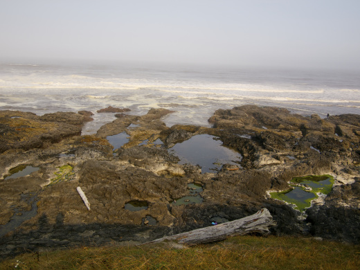 Overlooking the tide pools at Cape Perpetua