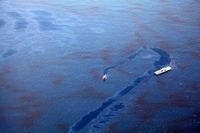 oil_clean_up_at_impact_site_(5015342704)