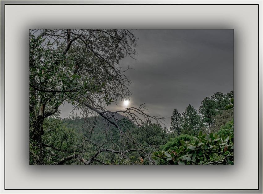 Sunrise (1 of 1)-3 blog