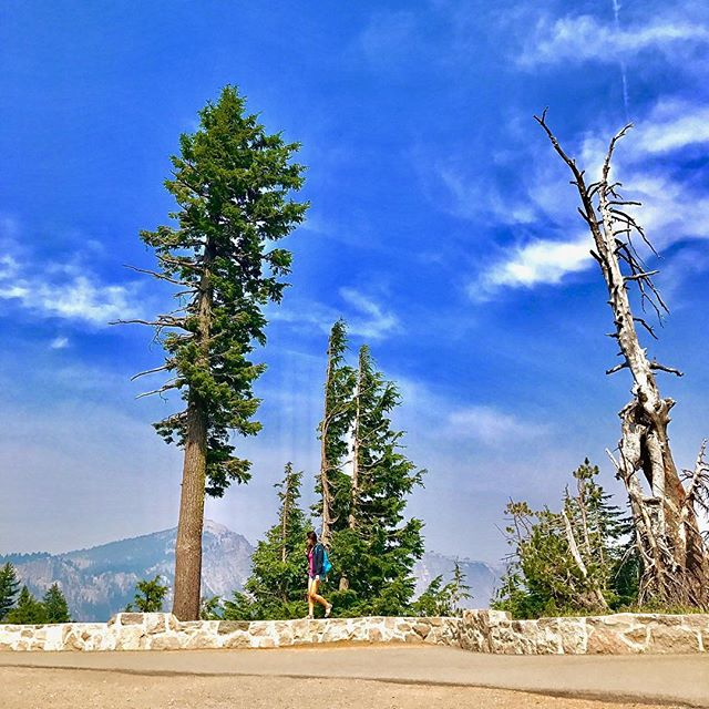 Exploring Crater Lake National Park 🌿#findyourpark #craterlake #Oregon 📷: @creativemakers